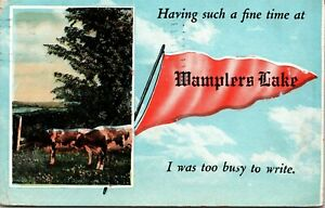 Pennant Postcard MI Having Such a Fine Time at Wamplers Lake Cows 1923 M53