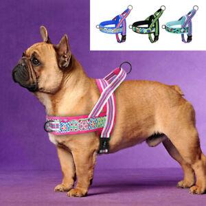 No Pull Plush Padded Dog Harness Reflective Front Leading Dog Walking Vest XS-L