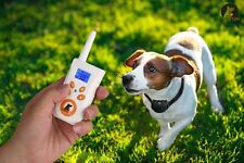 New Arrival Paipaitek Dog Training Collar Behavior Anti Bark Device White Orange