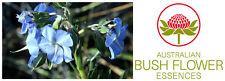 FIORI AUSTRALIANI Rough Bluebell CATTIVERIA-SFRUTTAMENTO/Compassione Sensibilità