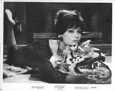The Pink Panther original re-release 1966 8x10 photo Claudia Cardinale on tiger