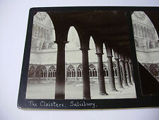 c1890s THE CLOISTERS Salisbury Cathedral STEREOVIEW PHOTO