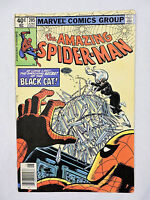 THE AMAZING SPIDER-MAN #205 Marvel Comic Book (VF+)