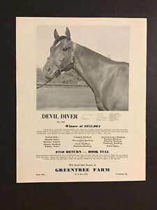 DEVIL DIVER ORIGINAL 1946 GREENTREE FARM STUD AD