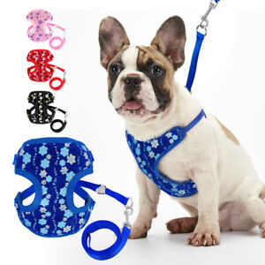 Pet Walking Harness and Leash set Sequins Flower Cat Dog Mesh Vest Small Puppy