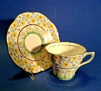 Rosina Tea Cup And Saucer  - Spring Jonquils - Blue Yellow Red Green - England