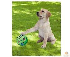 Unbranded Plastic Ball Dog Toys