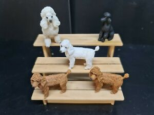 dolls house accessories 5 x  assorted dogs 1.12th Y