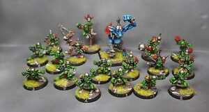 Equipe BloodBowl Gobelin Edition Pro Painted