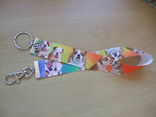 Handmade Bulldog Bag Key Finder Charm Ribbon Long Fob Ring Orange Blue Dog Puppy