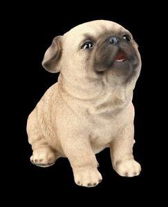 Hunde Figur - Mops Welpe - Niedliches Hündchen Hundebaby Deko