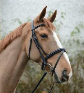Details about  /New Leather English Horse Bridle with Web Reins All Size Free Shipping