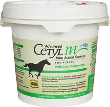 ADVANCED CETYL M HORSE Joint Action Formula Joint Health Mobility 11.2 LB