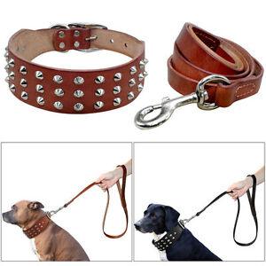 Real Leather Dog Collar and Leash Set Spike Studded Rivet Bulldog S M L Brown