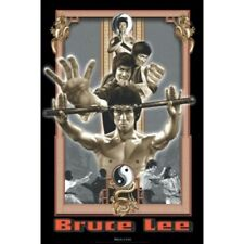 30275598821 BRUCE LEE POSTER - DRAGON MULTIPLE COMBAT POSES MONTAGE - 36 x 24