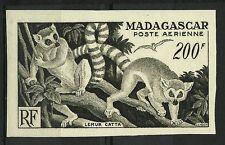 MADAGASCAR LEMURIENS MAKI CATTA LEMUR CATTA FAUNE ESSAI COLOR PROOF ESSAY **1954