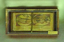 Dolls House miniatura MUSEUM/STORIA ANTICA Mappe Libro in caso