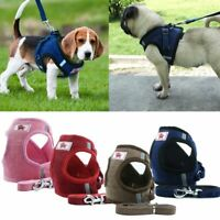 Pet Control SMALL Dog Harness Soft Mesh Walk Collar Safety Strap Vest Leash Set