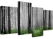 Canvas Wall Art of Green Forest Woodland Trees in Black and White