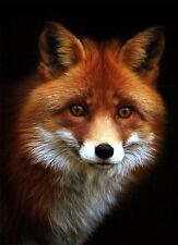 Beautiful Red Fox Portrait Cross Stitch Pattern, 14 ct. Aida