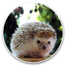 2 x Vinyl Stickers 30cm - Cute Hedgehog Garden Animal  #44780