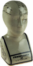 Small 16cm High Ant. Phrenology Head Decorative Ornament