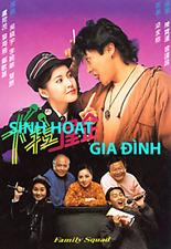 SINH HOAT GIA DINH -  PHIM BO HONGKONG - 9 DVD