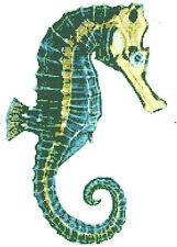 CROSS STITCH KIT -  SEAHORSE  23 X 34 CM