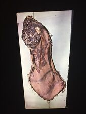 "Claes Oldenburg ""Street Head II (pear)"" Pop Art 35mm Art Slide"