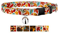 Country Brook Petz® Cat Collar - Awesome Autumn Collection