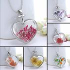 Nature Dried Flower Silver Heart Glass Pendant Necklace Sweater Chain Jewellery