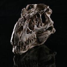 Tyrannosaurus Rex Dinosaur Resin Fossil Skull Model Collectibles Model