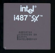 Rare Intel A80487SX B0 SZ494 A4 CPGA-169 very nice not tested for collection