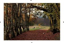 Photo Automne - Herbst Collection Les 4 Saisons - Nature in 4 seasons