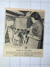 1956 Barbara Donoghue Aged 18 English Shetland Sheepdog Show Kennels Northwood