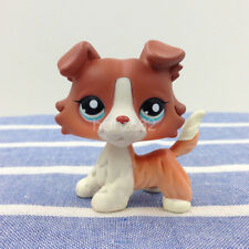 Rare LPS #1542 Littlest Pet Shop Brown Orange Collie Dog Puppy Figure Kids Toys