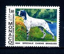 MONACO - 1984 - Esposizione canina internazionale di Montecarlo