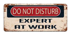 Do Not Disturb: Expert At Work - Vintage Metal Sign Funny Bedroom Man Cave Gamer