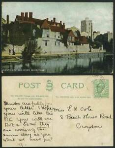 MAIDSTONE Vintage Colour Postcard Old Palace & River, Church Kent