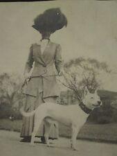 ANTIQUE EDWARDIAN LADY DOG OWNER WHITE AMERICAN PITBULL FOLK ART COLLAR PHOTO