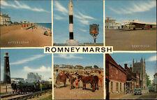 Romney Marsh Mehrbild AK 1977 Littlestone Dungeness Railway Dymchurch Ferryfield
