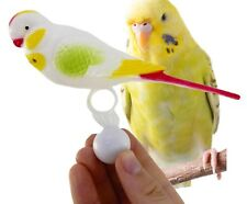36601 Bird Buddy Parrot Bonka Bird Toys Cockatiel Budgie parakeet cage toy cages