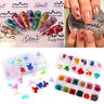 Colorful 3D Decoration Real Dry Dried Flower for UV Gel Acrylic DIY Nail Art Tip