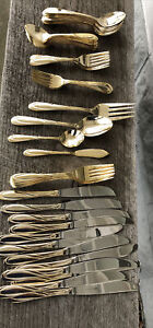 Faberware Nicole Gold Plated flatware Silverware Stainless Service For 12 + 4