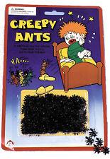 Ants Creepy Blister pack
