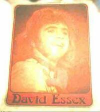 David Essex Original 1970s T-Shirt Iron-On