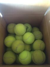 Tennis Balls-50 Used for Beyond Court Use $19.99+ S&H