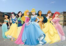 DISNEY princesess A3 LUCIDA POSTER 1D