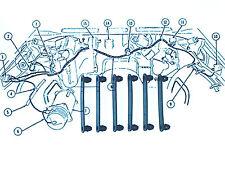 "Pontiac Chevy GM Ford Mopar Wiring Harness Straps 2 1/4"" Washer Hose 6pc Kit"