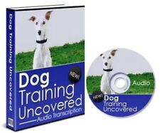 Petrainer IS-PET998D2 330 Yard Remote Dog Training E-Collar Alternative